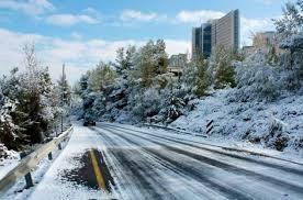 הדסה בשלג