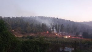 משטרת ישראל צילום שריפה בהרי ירושלים 16.8.2021