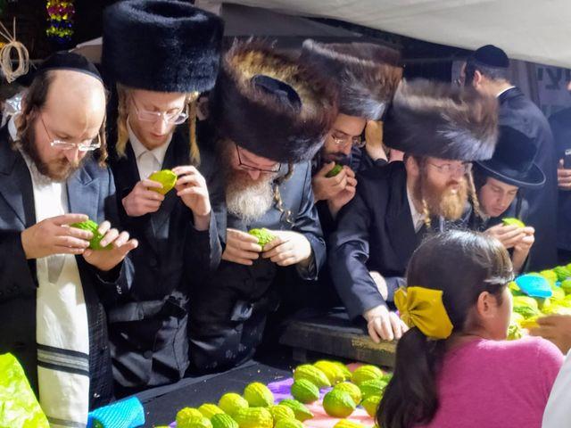שוק ארבע המינים בכיכר ולירו בירושלים