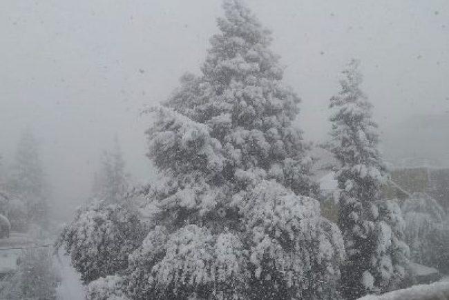 כוחות החירום וההצלה נערכים לקראת מזג האוויר והשלג הצפוי